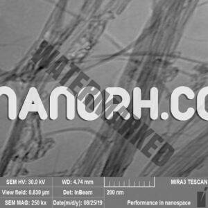 Double Walled Carbon Nanotubes