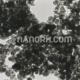nano products
