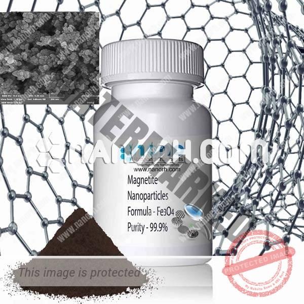 magnetite nanoparticles